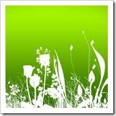 fresh-foliage