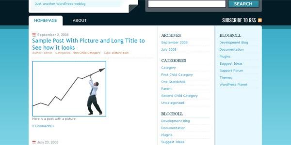 publicizer-wordpress-theme