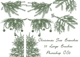 Christmas_Tree_Branch