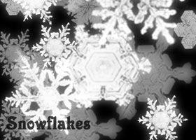 48 Brushs về Tuyết, Băng, Mùa đông, Giáng Sinh - Image 21