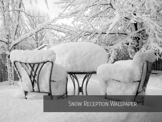 Snow-Reception-Wallpaper
