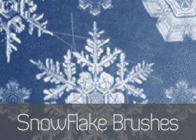48 Brushs về Tuyết, Băng, Mùa đông, Giáng Sinh - Image 5