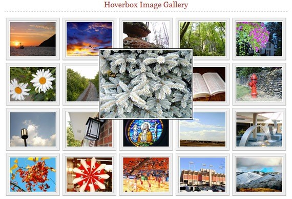 Free Photo Galleries hoverbox image gallery