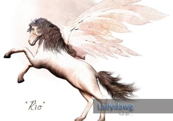 horse-ladydawg