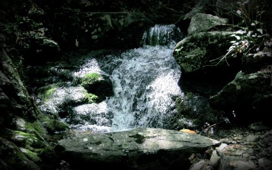 Appalachian trail spring wallpaper