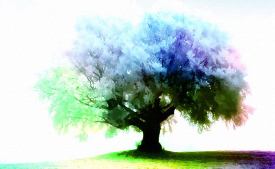 Season Tree wallpaper