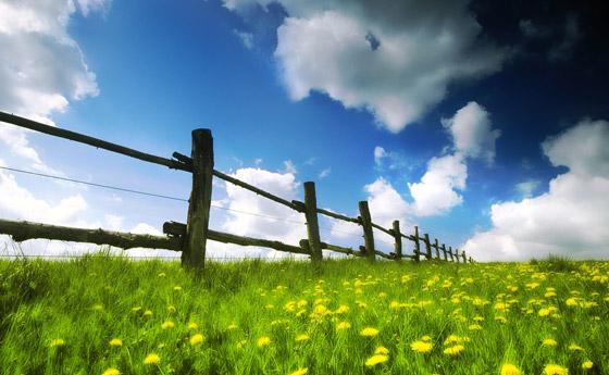 spring-image-wallpaper