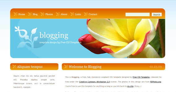 blogging-css-xhtml-template