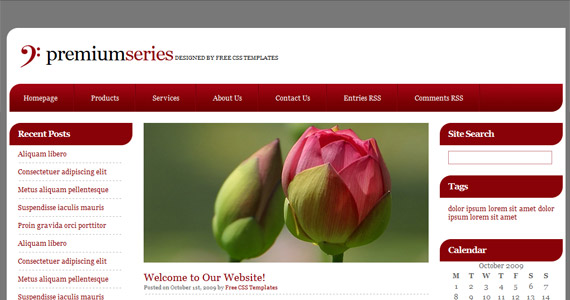 Css and html website templates free download website templates.