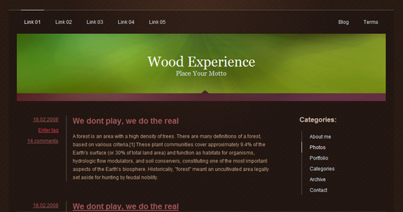 wood-experience-xhtml-css-template