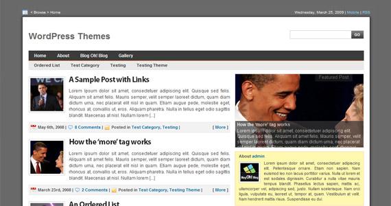 digital-statement-professional-wordpress-themes