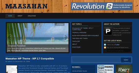 maasahan-professional-wordpress-theme