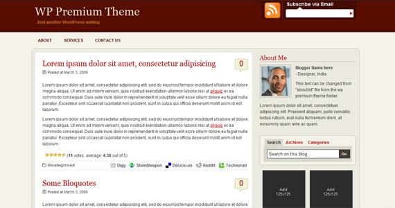 wp-premium-professional-wordpress-theme
