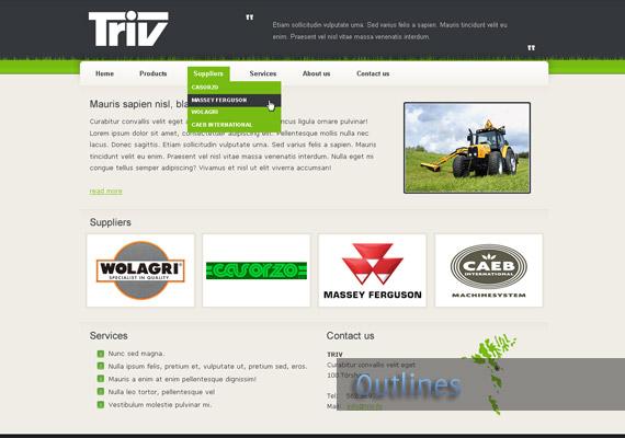triv website-design