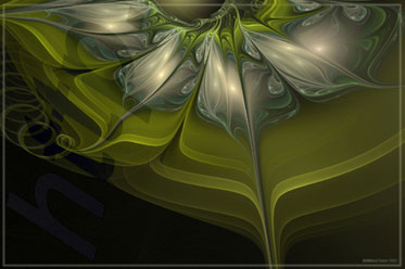 apophysis-oily-tutorial