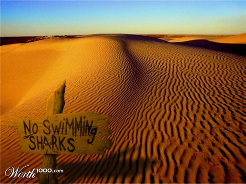 desert-photomanipulation