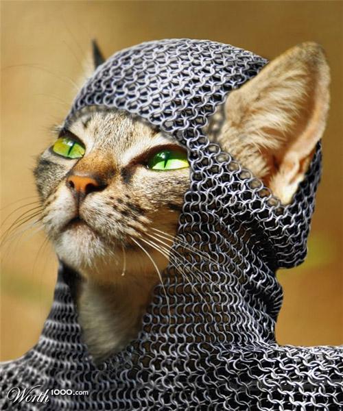 medieval-kitty-photomanipulation