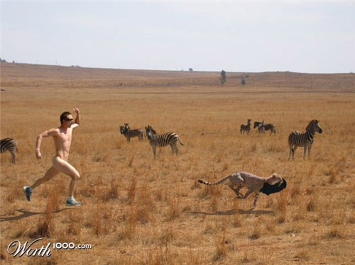 safari-run-photomanipulation