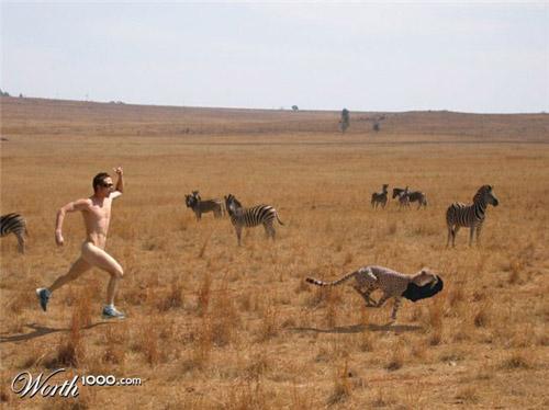 safari-run-photomanipulation