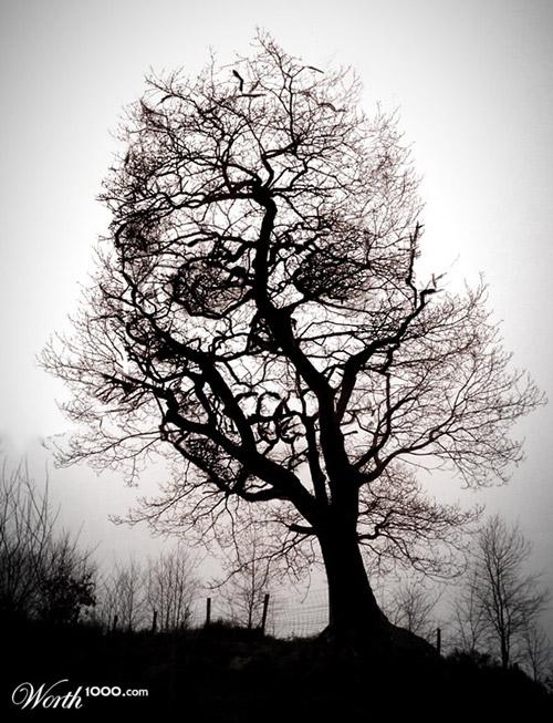 tree-of-death-photomanipulation