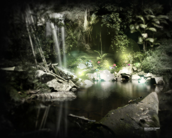 Enchanted Forest desktop-background