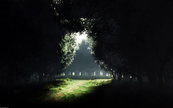 darkness-to-light-wallpaper