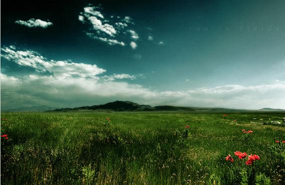 run-in-fields-wallpaper