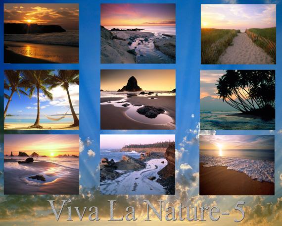 viva-la-nature-wallpaper