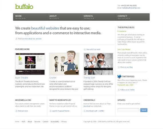 buffalo-minimalist-web-design-inspiration
