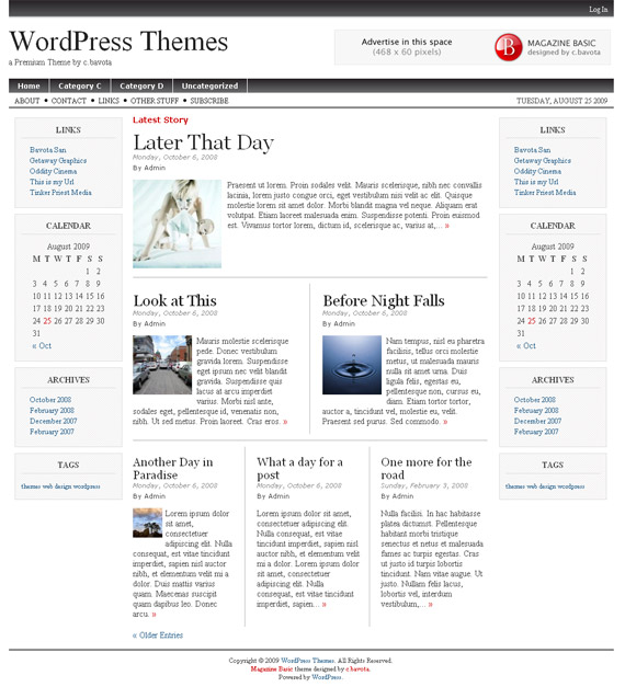 basic-2-4-magazine-free-wordpress-theme-for-download