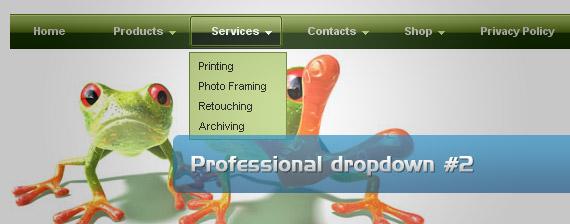 professional-drop-down-multi-level-menu-navigation
