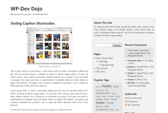 wp-dev-dojo-minimalist-typography-wordpress-theme
