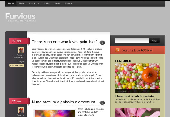 furvious-free-premium-wordpress-theme