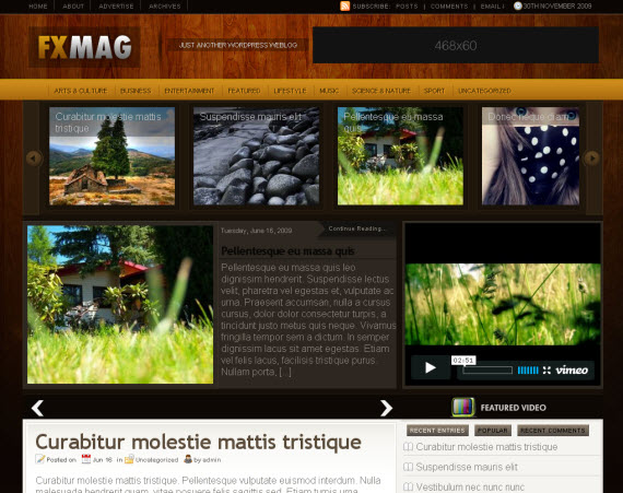 fx-mag-free-premium-wordpress-theme