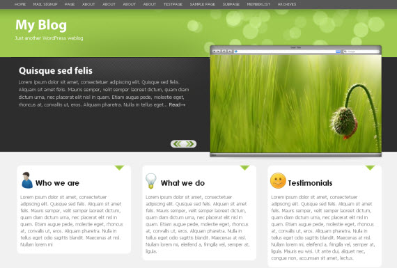 mintozine-free-premium-wordpress-theme