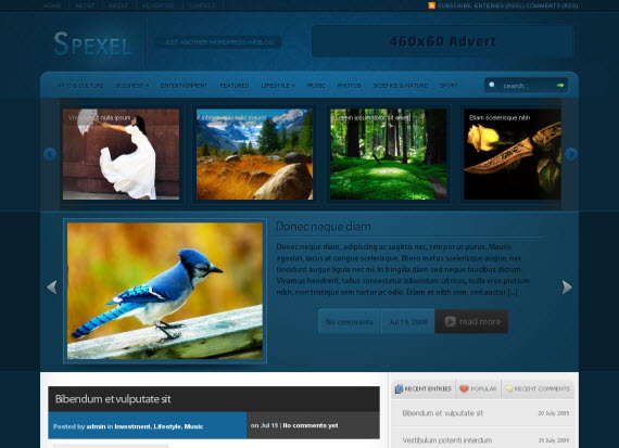 spexel-free-premium-wordpress-theme