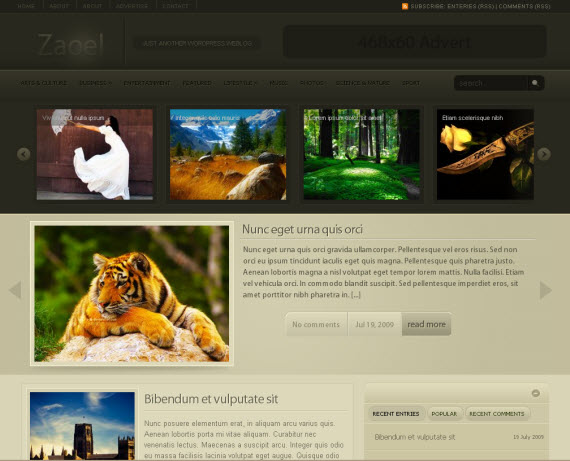 zaoel-free-premium-wordpress-theme