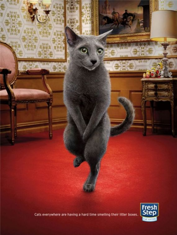 Fresh-step-most-interesting-and-creative-ads