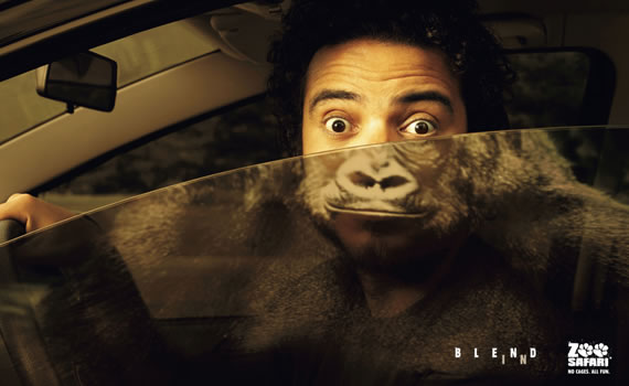 Gorilla-show--most-interesting-and-creative-ads