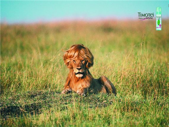 Timotei-hair-most-interesting-and-creative-ads