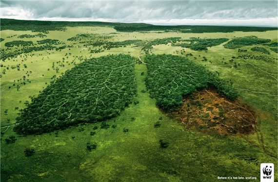 Wwf-lungs-most-interesting-and-creative-ads