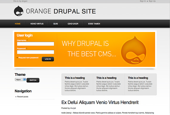 drupal-amandarodriguez-orange-drupal-6-theme-web-design