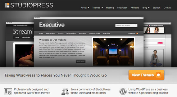 Group-interview-of-wordpress-theme- sellers-popular-designer-developer-interviews