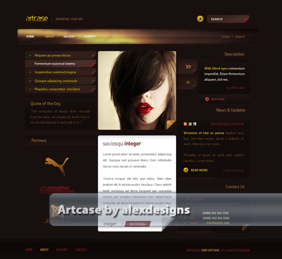 Artcase-web-design-deviantart-inspiration