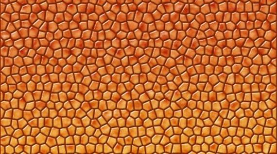 Dragon Skin Fabric Used as Skin For a Dragon