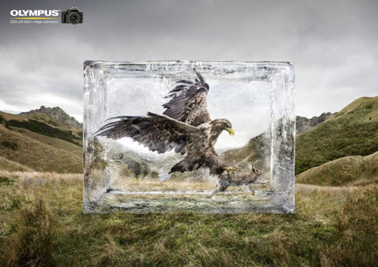Olympus-image-stabilization-creative-unique-advertisements