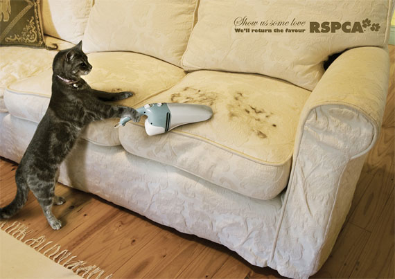 Rspca-hard-working-cat-creative-unique-advertisements