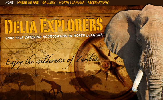 Delia-explorers-looking-textured-websites