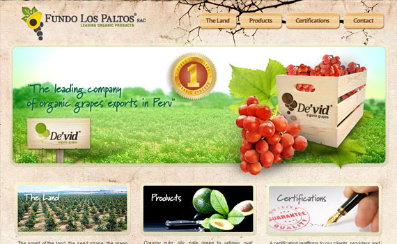 Fundo-los-paltos-good-looking-textured-websites