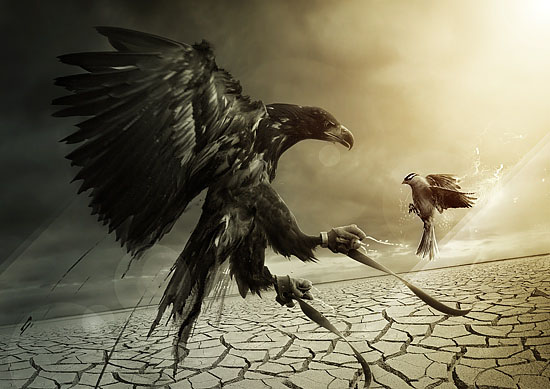 Evoke-one-unity-oppression-creatively-thrilling-photo-manipulations